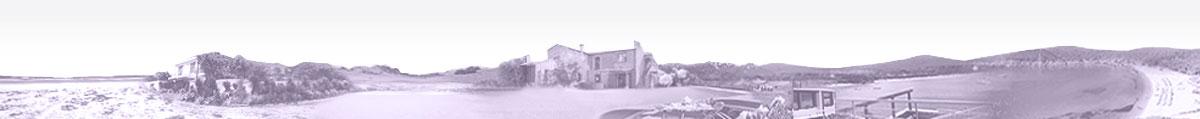 Villa & Charme Charming Villas Italy Tuscany to rent